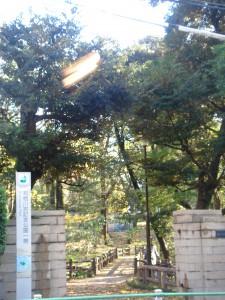 元麻布ヒルズ 公園1