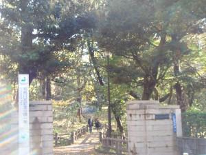 元麻布ヒルズ 公園2