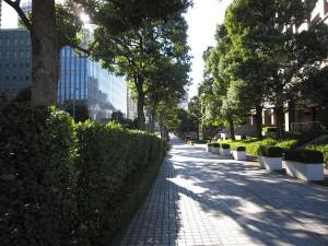 スカイライトタワー 前面歩道